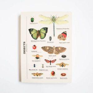 Linkovaný sešit A5 s hmyzem